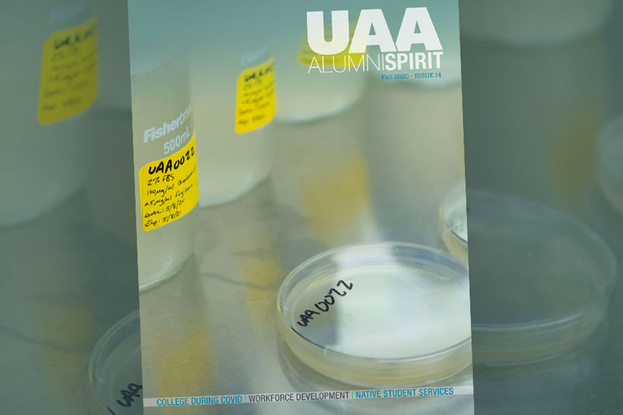 Petri dishes on the cover of fall 2020 Alumni Spirit magazine