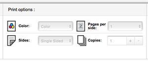 Managed Print Print Center Print Options