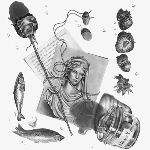 Drawing of a statue photo, rose, fish, strawberries, and honey