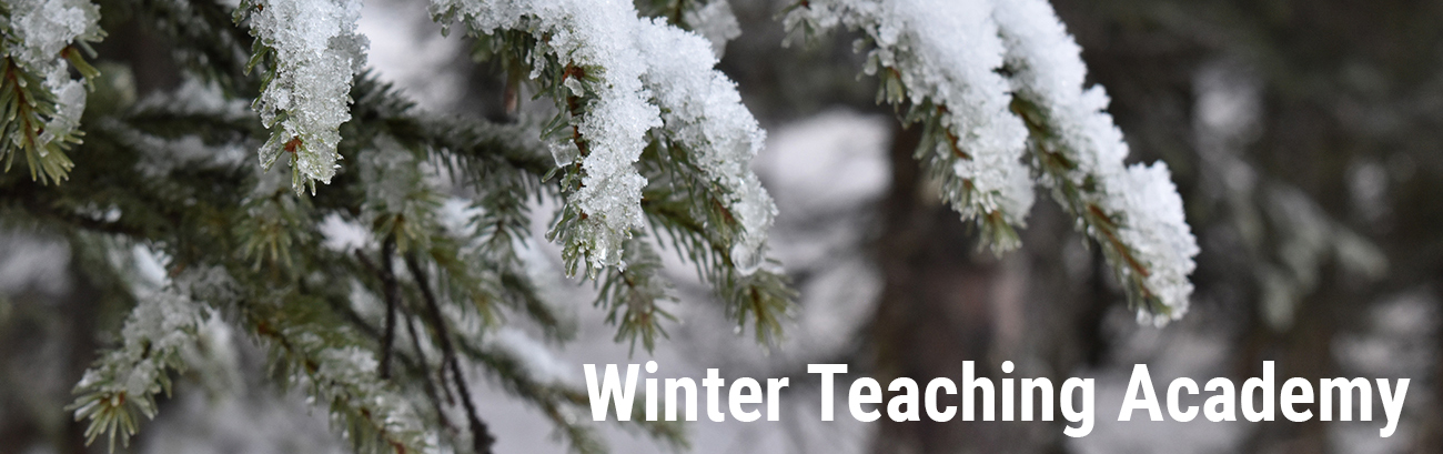 winter teaching academy snow on branches