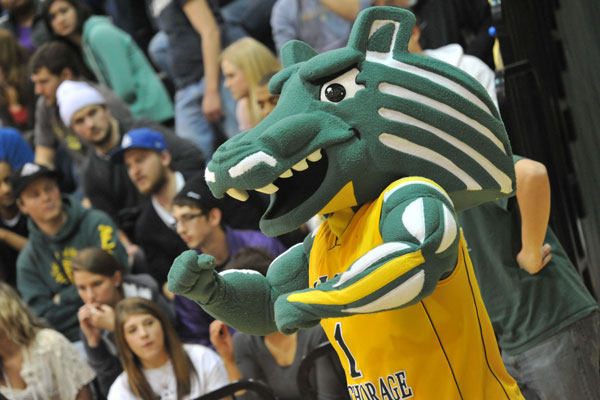 Spirit the Seawolf Cheers on Seawolf Sports