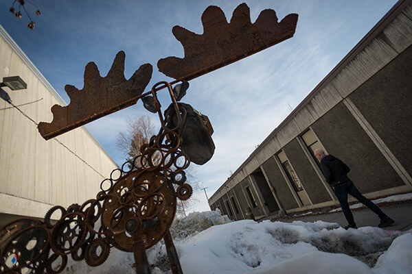 Sculpture of a moose watches a student walk on campus.