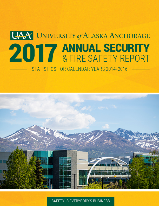 Annual Security Report 2017